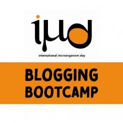 IMD Bootcamp